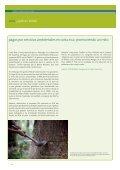 redd: la verdad en blanco y negro - Friends of the Earth International - Page 6