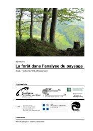 La forêt dans l'analyse du paysage
