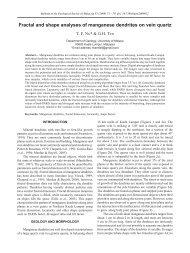 Fractal and shape analyses of manganese dendrites on vein quartz