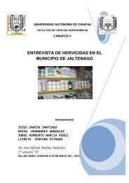 entrevistas a empresas de agroquimicos en el municipio de ...