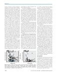 Body Burdens of Polychlorinated Dibenzo-p-dioxins ... - BVSDE - Page 5