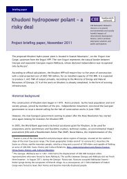 a risky deal - Project briefing paper, November 2011