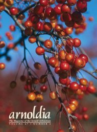 The Magazine of the Arnold Arboretum - Arnoldia - Harvard University