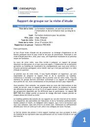 rapport final formation modulaire - AEF Europe