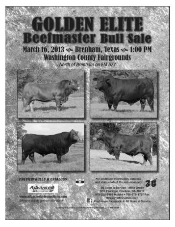 Beefmaster Breeders United - Advanced Video Auctions