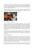 Trois expériences diversifiées - Église Catholique d'Algérie - Page 2