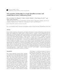 Soil-vegetation relationships in cerrado - Departamento de Ecologia