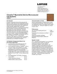 Myometrial Uterine Microvascular Cell System - Lonza