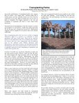Palm Tree Culture - Merced County - University of California ... - Page 2