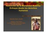 Reducción de la Mortalidad Materna: Enfoque desde los ... - CINU