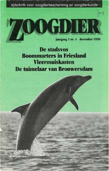De stadsVOS Boommarters in Friesland ... - Zoogdierwinkel