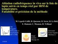 Ablation radiofréquence in vivo sur le foie de lapin suivie en temps ...