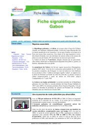 Fiche signalétique Gabon - ILE-DE-FRANCE INTERNATIONAL