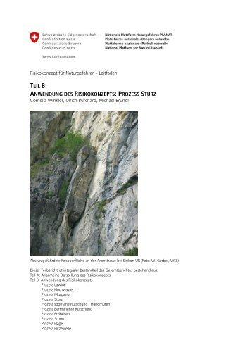 teil b: anwendung des risikokonzepts: prozess sturz - Planat
