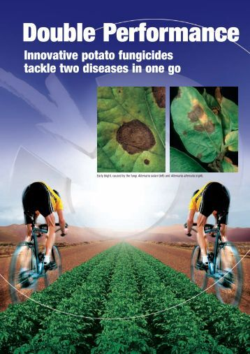 Download: ( 402 KB pdf) - Bayer CropScience Mexico