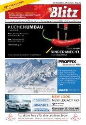 Fasnacht 2013 - Nidwaldner Blitz