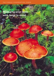 Managing your land with fungi in mind - Plantlife