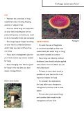 Managing your land with fungi in mind - Plantlife - Page 3