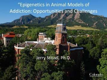 """Epigenetics in Animal Models of Addiction: Opportunities and ..."