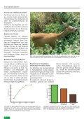 Freihalteflächen - Waldwissen.net - Seite 3