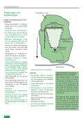 Freihalteflächen - Waldwissen.net - Seite 4