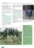 Freihalteflächen - Waldwissen.net - Seite 5