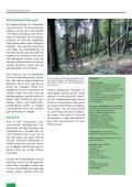 Freihalteflächen - Waldwissen.net - Seite 6