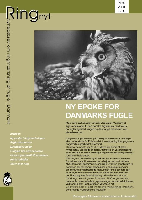 pdf version - Zoologisk Museum