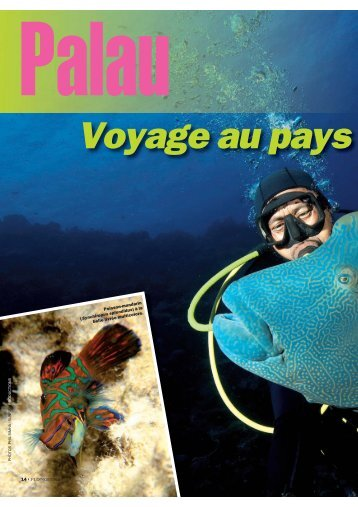 Voyage au pays - Abyss