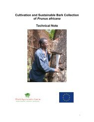 Cultivation and Sustainable Bark Collection of Prunus africana ...