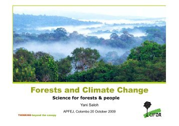 Forests and Climate Change, CIFOR-Presentation [Compatibility ...