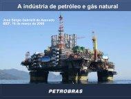 A indústria de petróleo e gás natural - Cogen
