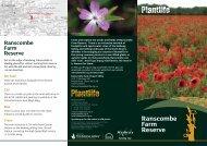 Ranscombe Farm Reserve - Plantlife