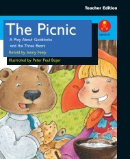 Baby Bear The Picnic