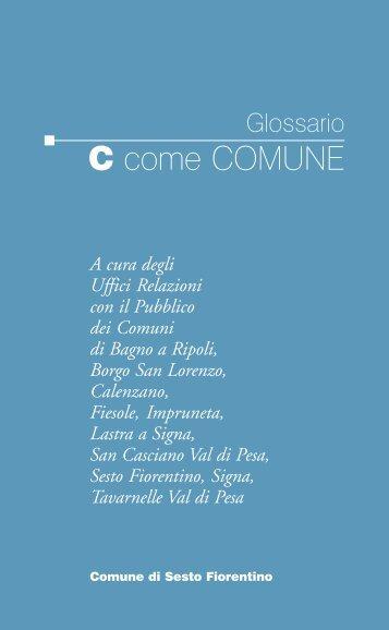 C....come Comune: il glossario della Pubblica Amministrazione (382 ...