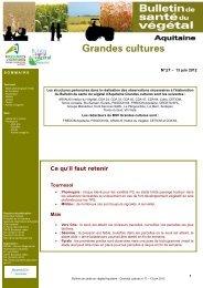 BSV N°17-Grandes Cultures - 13.06.2012.pdf - Chambre d ...