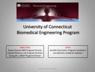 University of Connecticut Biomedical Engineering Program