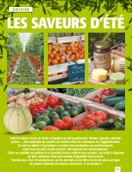 DOssIEr - Montpellier Agglomération