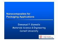 Nanocomposites for Packaging Applications