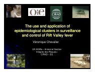 The use and application of epidemiological clusters in ... - OIE Africa