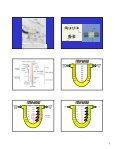 Mecanismos tubulares e concentração em contra-corrente - Page 5