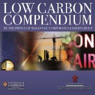 Low Carbon Compendium - Cambridge Programme for ...