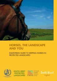 Horses, tHe Landscape and You - Dartmoor National Park