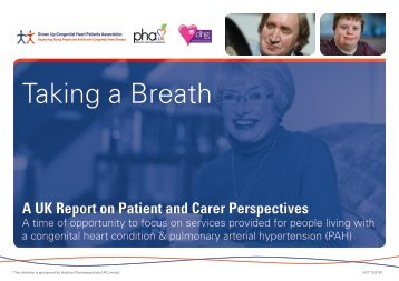 Patient and Carer Experience Report - the Pulmonary Hypertension ...
