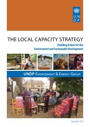 THE LOCAL CAPACITY STRATEGY - Equator Initiative