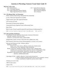 Torres Human Anatomy and Physiology Final Exam Review Sheet