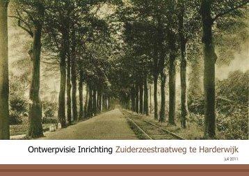 Ontwerpvisie Inrichting Zuiderzeestraatweg te ... - Stimuleringsfonds
