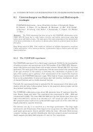 download as pdf - Institut für Kernphysik