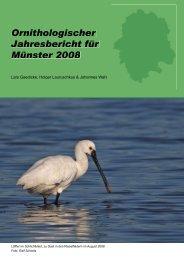 Ornithologischer Jahresbericht für Münster 2008 - MSOrni