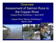 Assessment of Salmon Runs to the Copper River (PDF) - Ecotrust